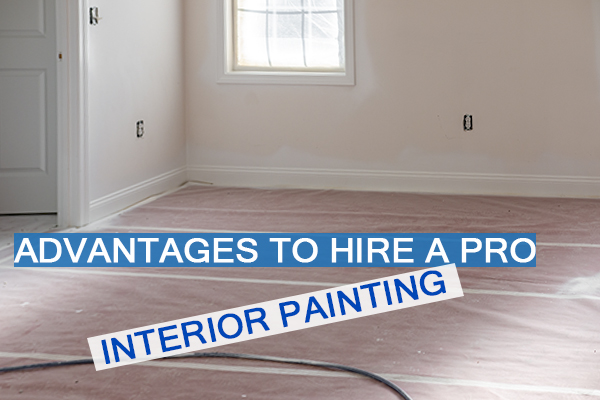 Castle Complements Painting Interior Painting Hire a Pro_IMGb_9100