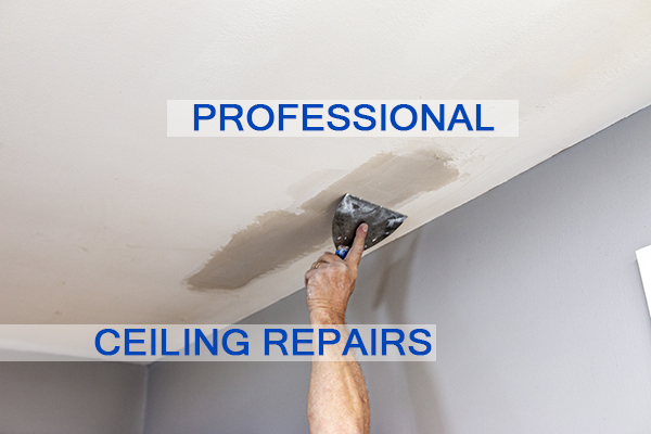 Castle Complements Painting Peeling Ceiling Paint Professional Ceiling Repairs_IMG_9745b