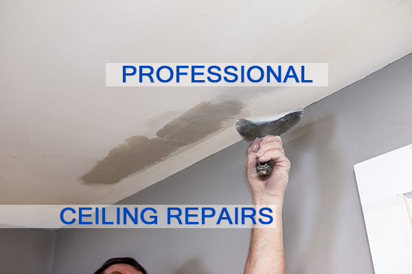 Castle Complements Painting Peeling Ceiling Paint Professional Ceiling Repairs_IMG_9747b