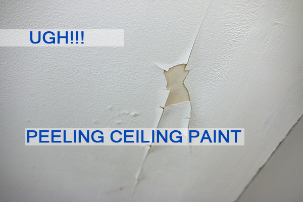 Castle Complements Painting Peeling Ceiling Paint_IMG_9706b