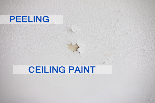 Castle Complements Painting Peeling Ceiling Paint_IMG_9708b