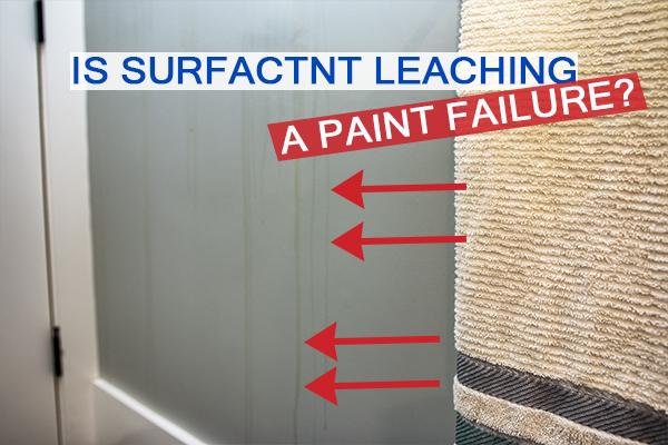 Castle Complements Painting Surfactant Leaching Bathroom Surfactant Leaching a Paint Failure_IMGb_0062